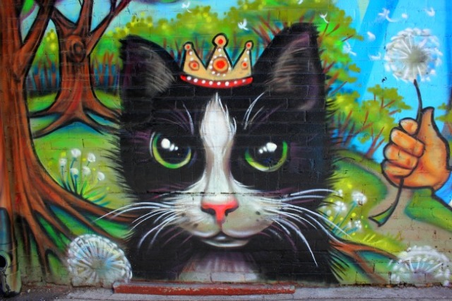 Toronto - cat king graffiti