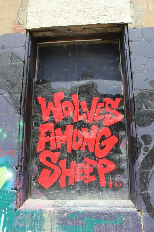Toronto - sheep among wolves
