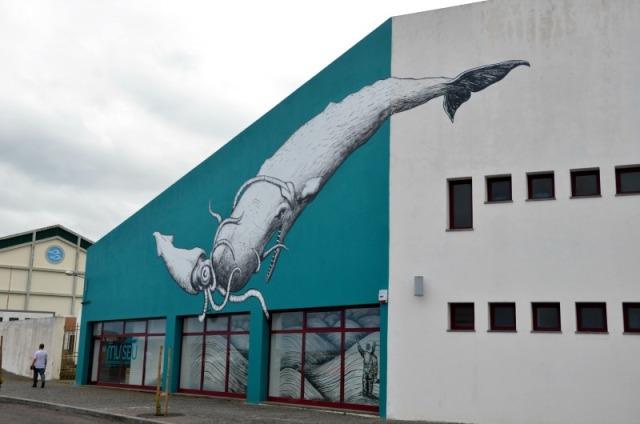 Azores - Pico whale
