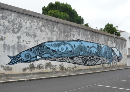 Azores - PD whale
