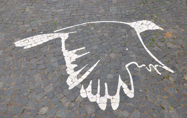 Azores - Terceira mosaic bird