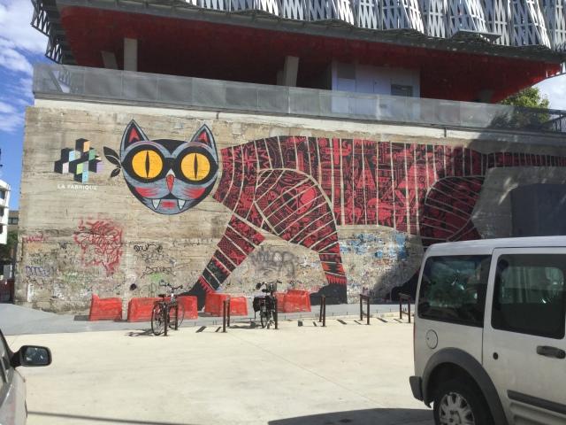 Rennes - cat