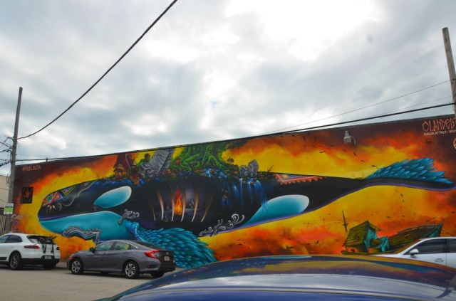 miami-whale